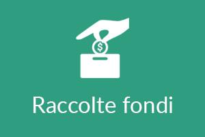 3.Raccolte fondi