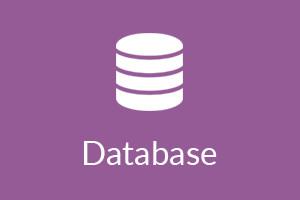 5.Database